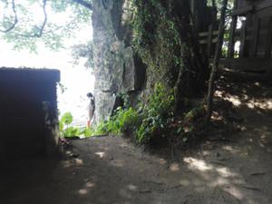 Tateiwajinjya2